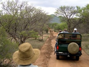 Ilanga Lodge - Jeep Safaris
